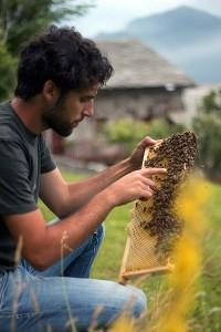 apicoltura agriturismo al chersogno valle maira miele presidio slow food