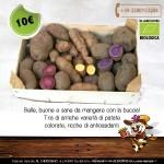 Belle, buone e sane da mangiare con la buccia! Tris di antiche varietà di patate colorate, ricche di antiossidanti.